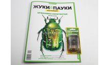 Жуки и пауки, Бронзовка золотистая, №1, масштабные модели (другое), Modimio, scale24