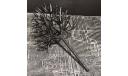 Каркас дерева 130 мм 1/43, элементы для диорам