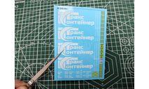 Декали DKM0154 Контейнеры ТрансКонтейнер вариант 1, фототравление, декали, краски, материалы, maksiprof, scale43