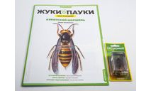 Жуки и пауки №5 - Азиатский шершень, журнальная серия масштабных моделей, MODIMIO, scale0