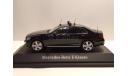 Mercedes-Benz E-Klasse (W213) ФСО России, масштабная модель, scale43