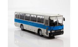 Икарус-256, Наши Автобусы №31