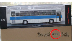 ClassicBus ИКАРУС-256.51 бело-синий Ikarus-256.51, масштабная модель, scale43