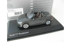Audi TT Roadster nano gray