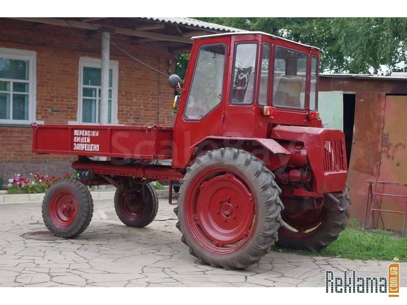 Купить трактор хтз т